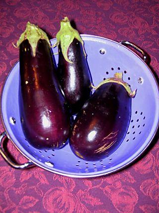 9-17 eggplant
