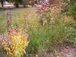 10-22 garden 1