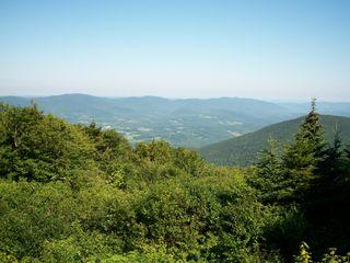 7-30 green vista