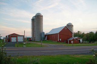 9-10 farm 4
