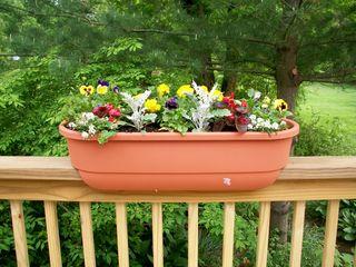 5-21 planter