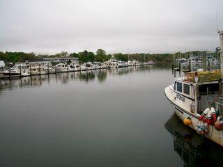 5-5 wharf