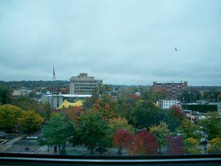 10-5 window view 2