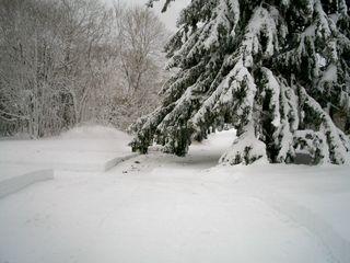 2-11 snow 1