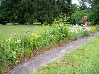 7-15 garden overview 1