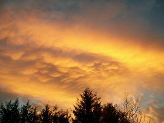 11-10 golden sky