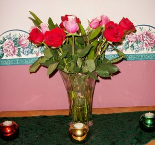 12-21 roses