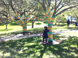 Virtu yarn bomb yellow and green with little girl