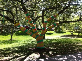 Virtu yarn bomb yellow and green