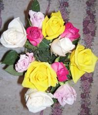 Fri_roses_1