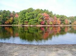 Tues_pond_foliage