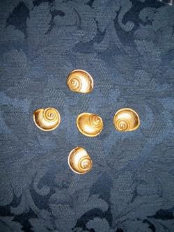 Sat_buttons