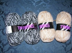 Tues_twins